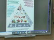 Poznajemy-piramide-zdrowego-zywienia-zajecia